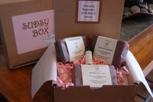 Sudsy Box