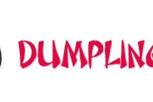 Dumpling Box