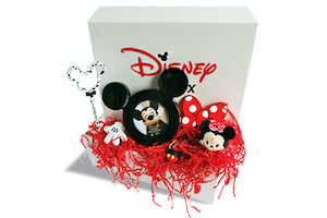 Disney in a Box: Wishes Monthly Subscription Box