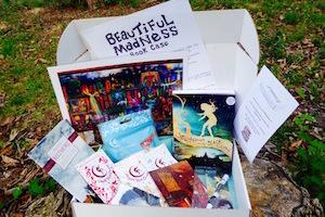 Beautiful Madness Book Case