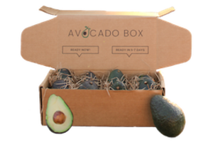 Avocado Box