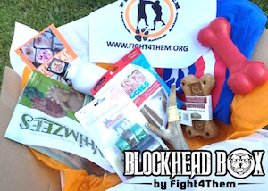 Blockhead Box by Fight4Them