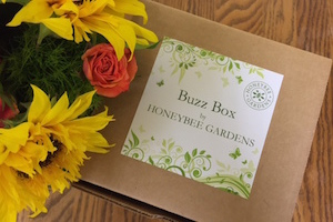 Honeybee Gardens Buzz Box