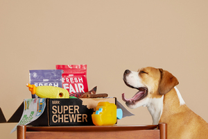 Super Chewer Box