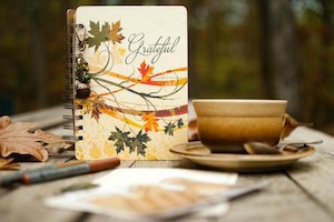 Holly Journals