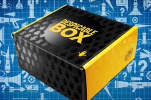 Despicable Box
