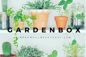 GardenBox by Kinderwellness