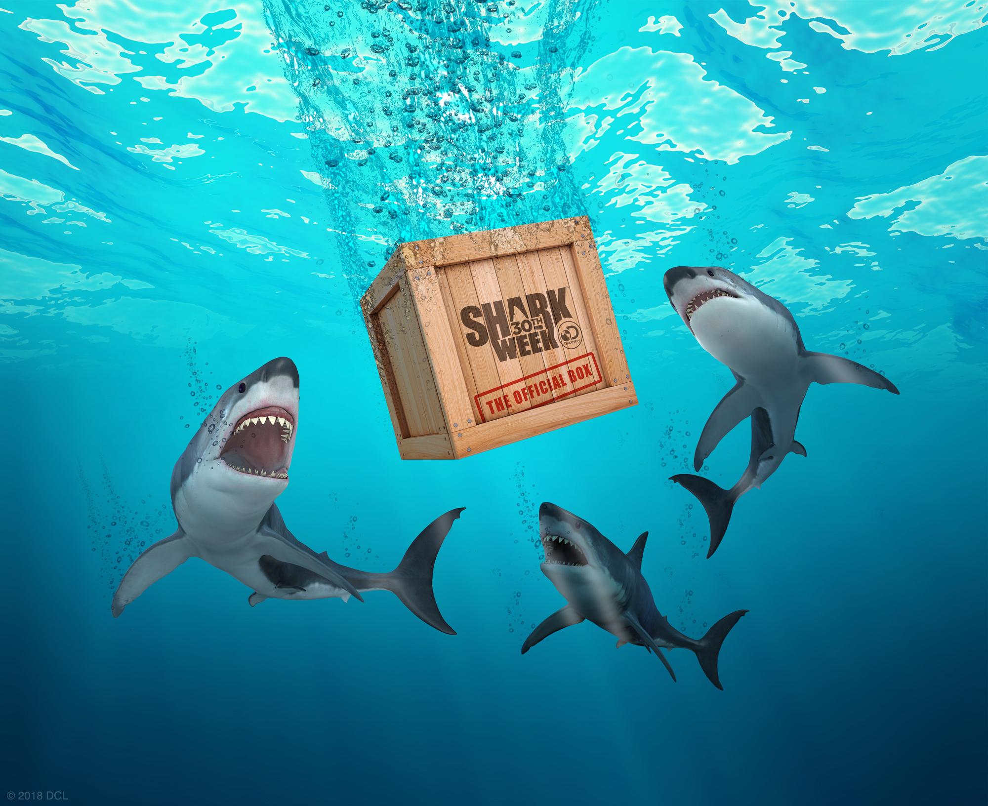 The Shark Week Box